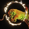 Цирки в Юрге